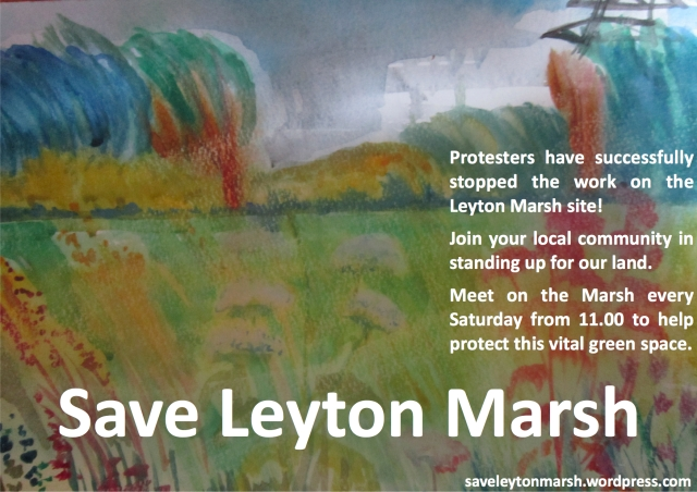 Save Leyton Marsh Flyer Generic-1