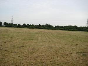 Leyton Marsh - left in a mess!