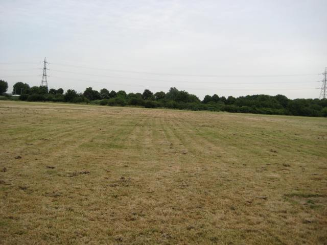 Leyton Marsh - after botched reinstatement and mowing