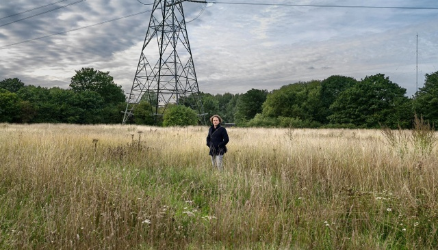 Gareth Rees, author of Marshland, on Hackney Marshes.